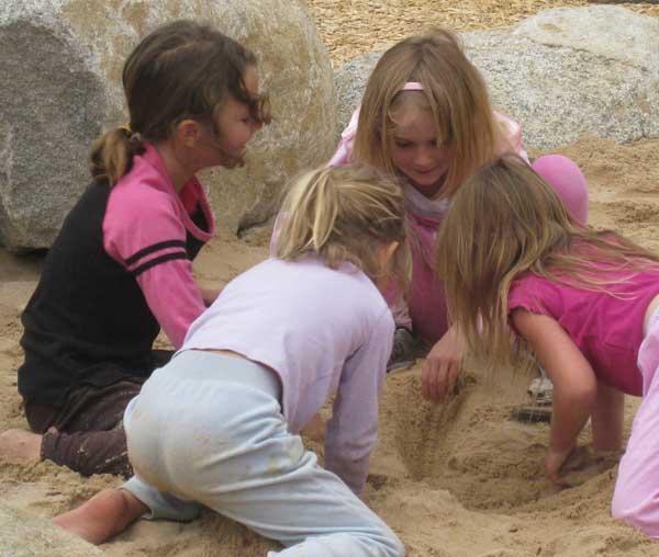 Sandbox fossil dig