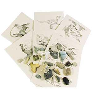 Book and Fossil Collection Sets