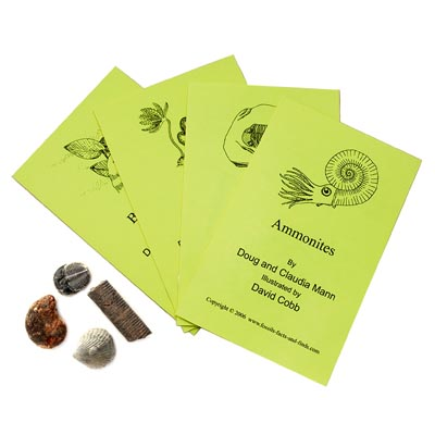 Four Famous Fossils - Book and Fossil Set