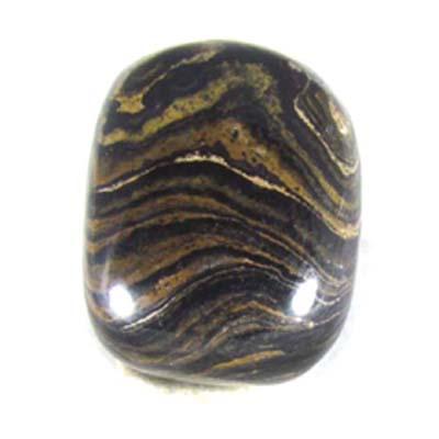 Polished Stromatolite Chunks Small