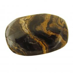 Polished Stromatolite Freeform Pieces 2 inches C