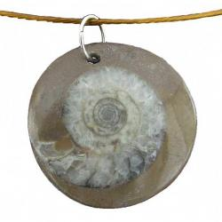 Ammonite Pendant as Choker